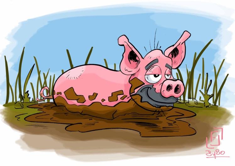 cochon couleur